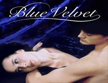مشاهدة فيلم Blue Velvet