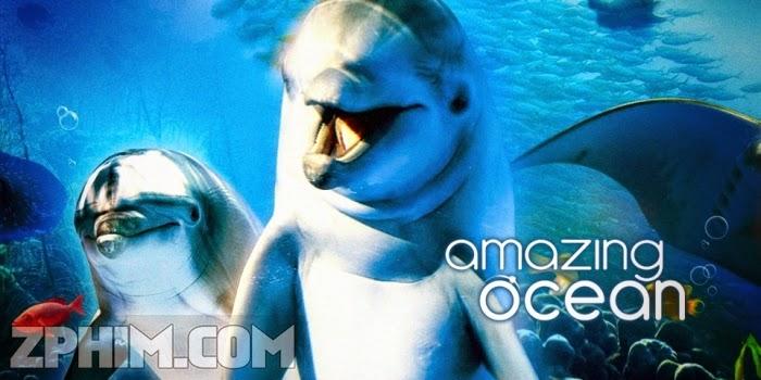 Ảnh trong phim Đại Dương Kì Thú - Amazing Ocean 3D 1
