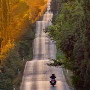 К чему снится езда на мотоцикле?