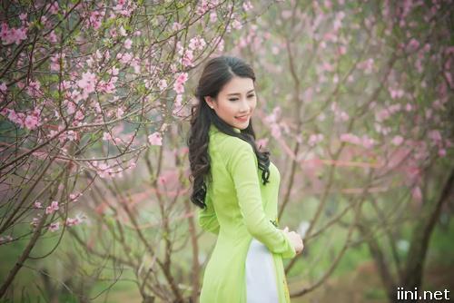 ảnh cô gái áo dài trong vườn đào ngày xuân