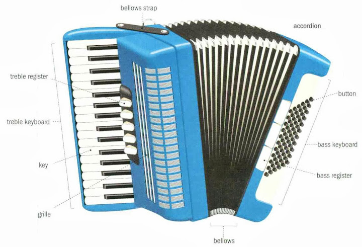 Traditional musical instruments  accordion
