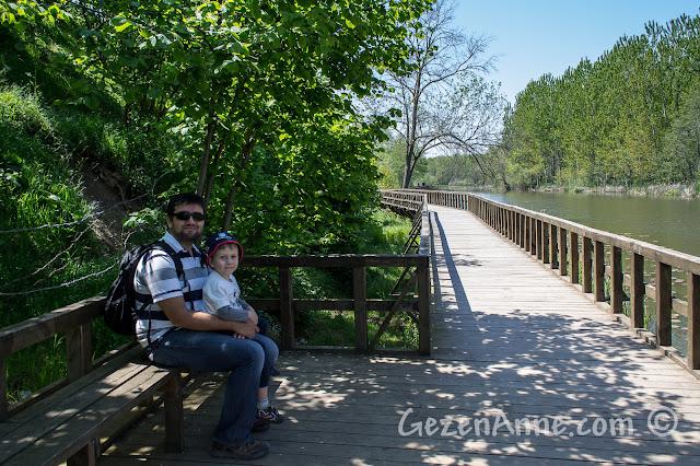 Sakarya Karasu'daki Acarlar Longozu'nda köprüde otururken