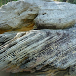 Rock on Little Congwong Beach near La Perouse (308786)