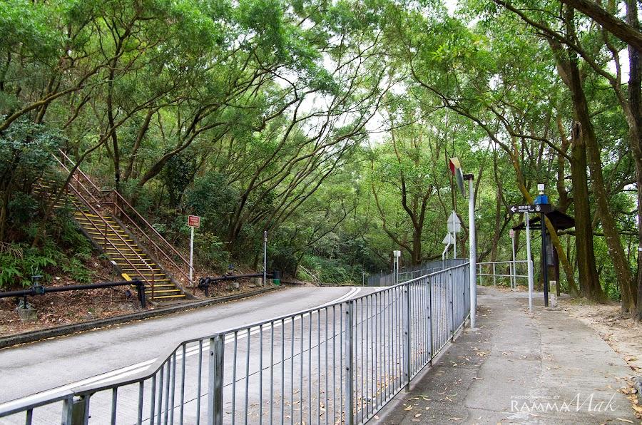 左方樓梯可上砲台山(衛奕信徑第三段的入口)