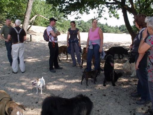 Hondenwandeling augustus (11).JPG