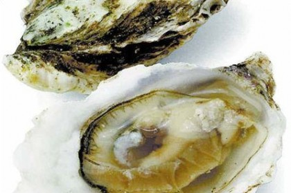 Ostras al natural fon fishing for Cocinar ostras