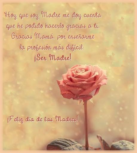Hoy que soy Madre me doy cuenta que he podido hacerlo gracias a ti. Gracias Mamá, por enseñarme la profesión más difícil. ¡Ser Madre!
