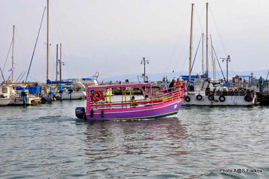 Порт Акко. Экскурсия по Акко. Гид в Израиле Светлана Фиалкова.
