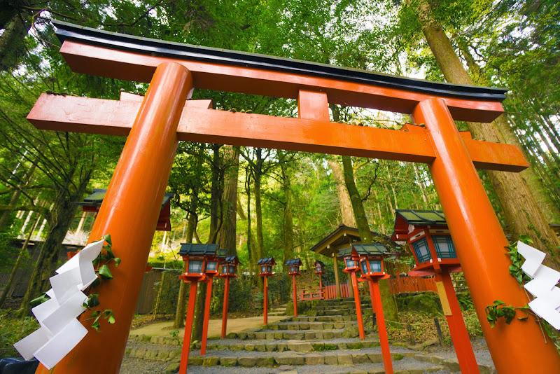 京都 貴船神社 結社 写真2