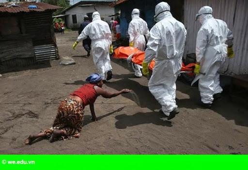 Hình 1: EU tổ chức hội nghị quốc tế về công tác phòng chống Ebola