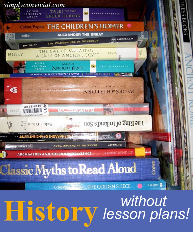history without lesson plans