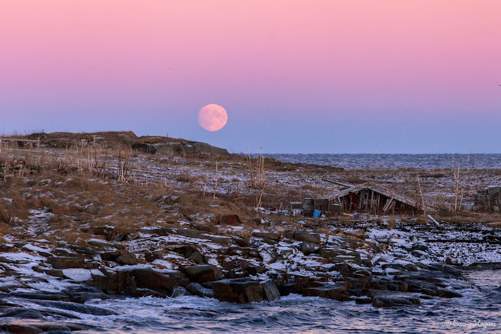 Winter in Norway: From Fiskenes, Andøya island, a low moon