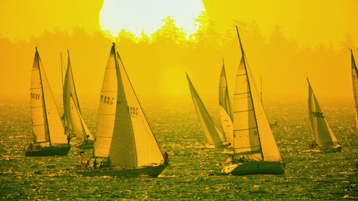 Sailboats Racing at Sunrise, Vancouver Island, British Columbia.jpg