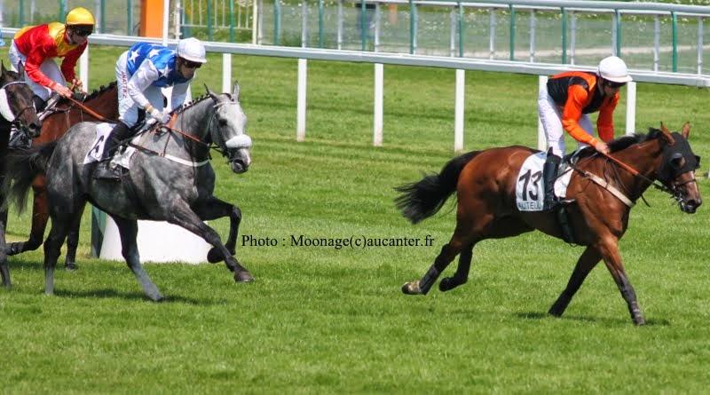 Photos Auteuil 8-06-2014  IMG_1787
