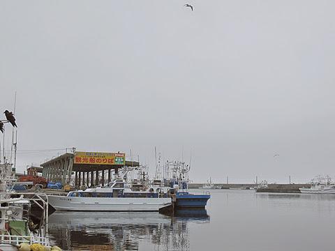 羅臼漁港 その1