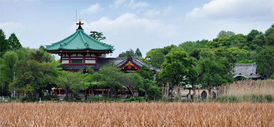 Parque Ueno en Tokyo