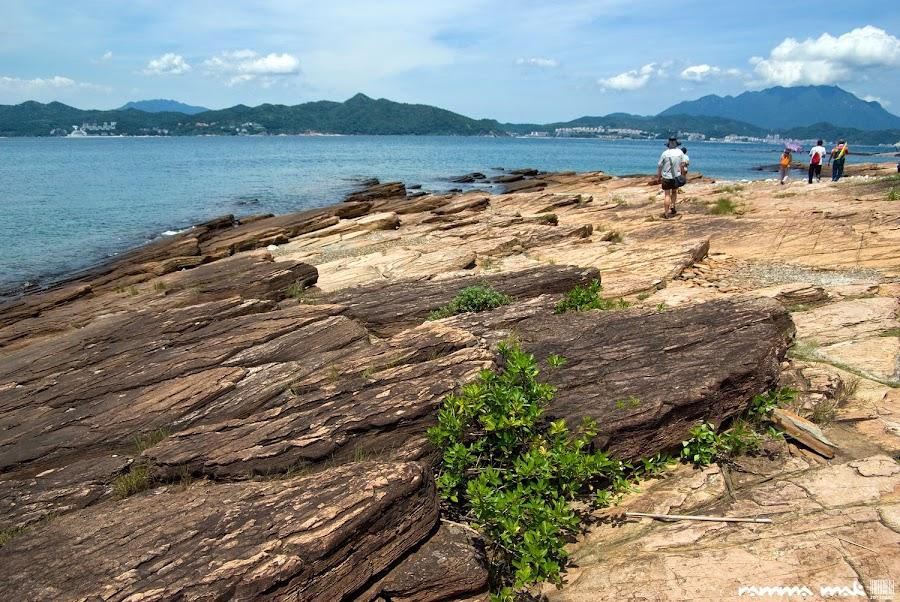 東平洲隨處可見的頁岩