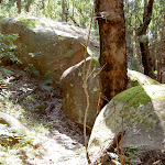 Track winding through boulders (22001)