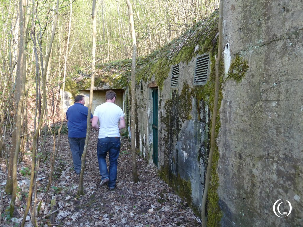Thierry showing us a bunker at wolfsschlucht 2 margival