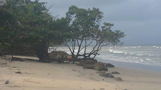 pasir pantai memutih