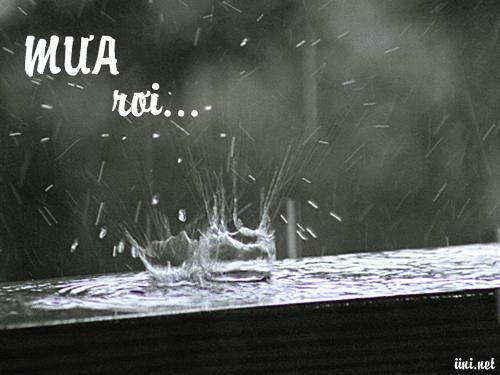 Thơ mưa buồn 5 chữ