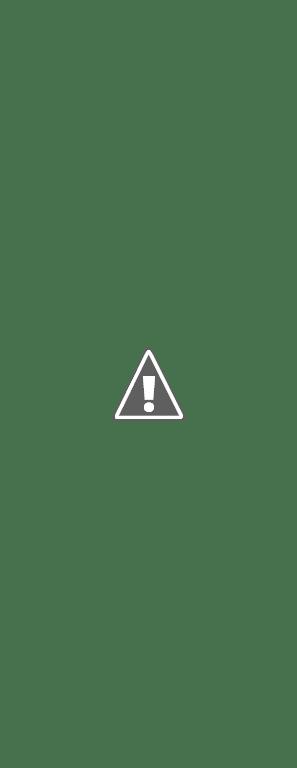 A Fleur de Chaux avec Bâtir au Féminin dans le Midi Libre du 17 11 11 dans enduits de chaux articleML