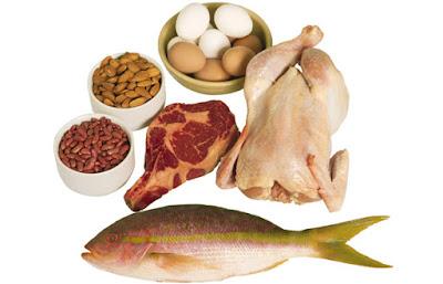 Nguồn thực phẩm giàu protein