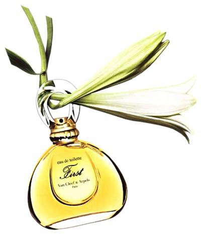 perfume-cadedo