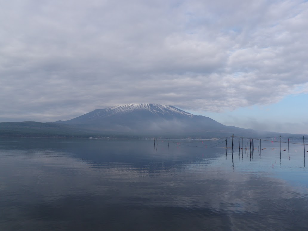 山中湖 バスフィッシング 富士山