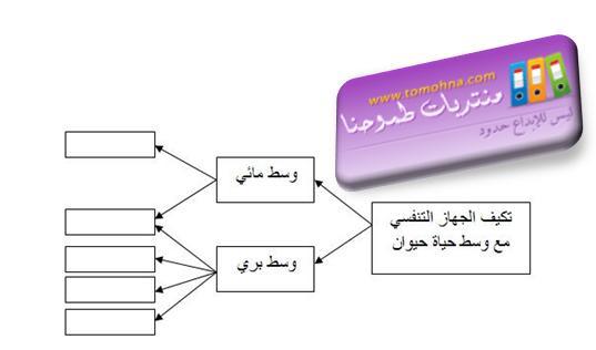 فرض الفصل الثاني في العلوم 1.JPG