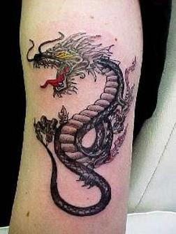 Dragon Tattoo on Arm