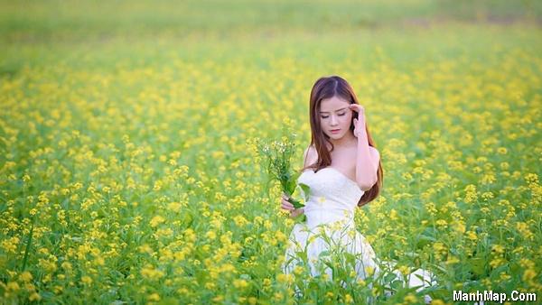 thiếu nữ bên vườn hoa cải vàng