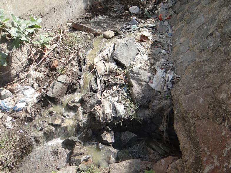 Untreated Sewage water in Duraisamy Thottam, West Saidapet, Adyar River