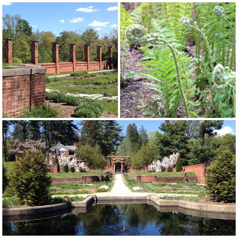Vanderbilt's Italian Garden