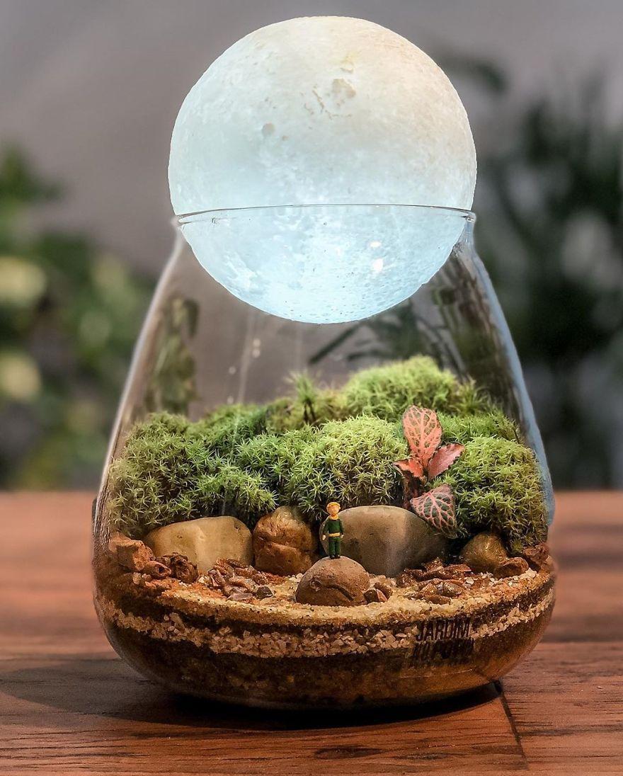 900+ terrarium ideas for gifts in 2021 | terrarium, mini garden, miniature  garden