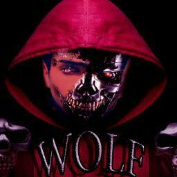 wolf tanha