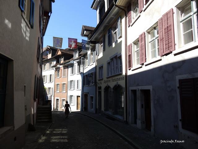 passeando - Passeando pela Suíça - 2012 - Página 14 DSC04914