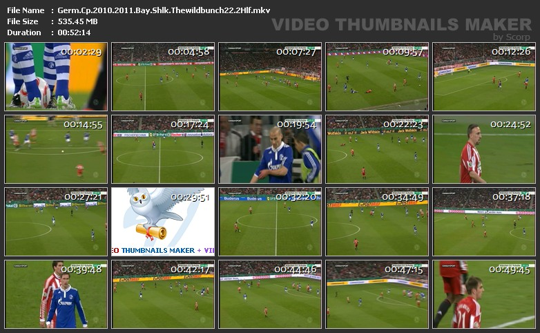 Copa de Alemania, Semifinal, Bayern Munich 0-1 Schalke 04, partido completo Germ.Cp.2010.2011.Bay.Shlk.Thewildbunch22.2Hlf