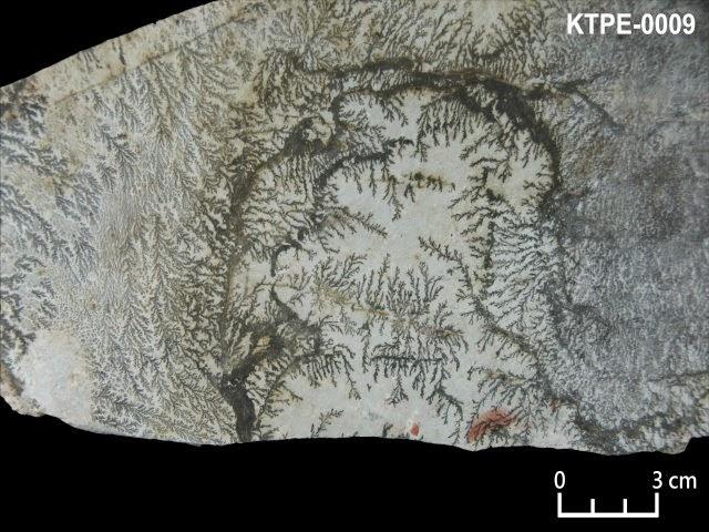 KTPE-0009 軟錳礦