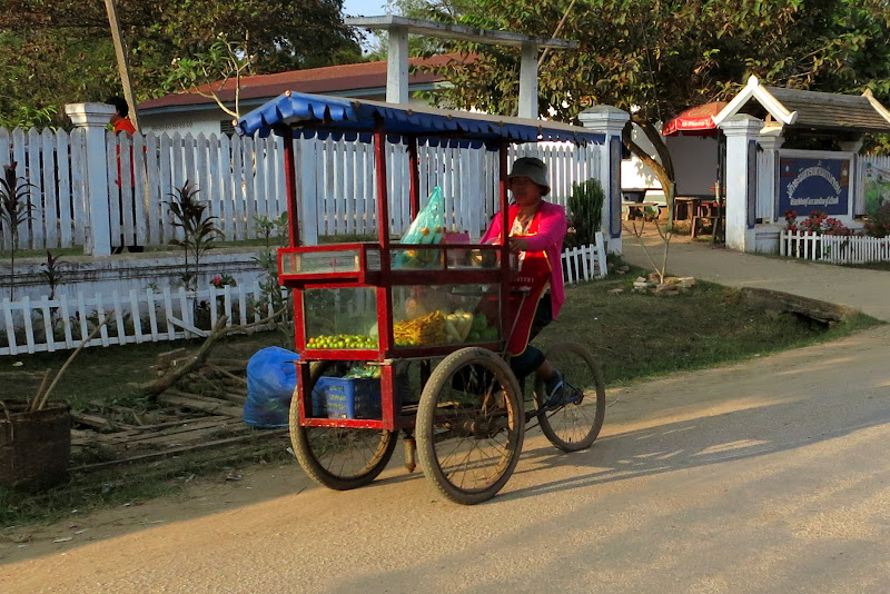 Woman with food cart