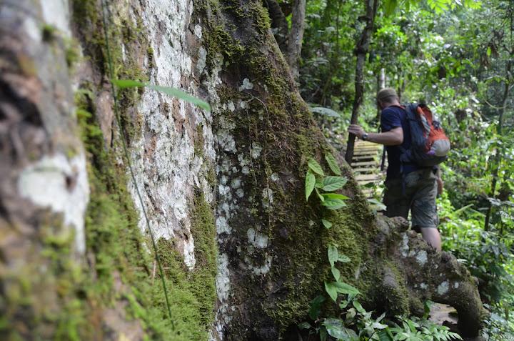Hillside Resort, trekking Luang Prabang, Waterfall tour