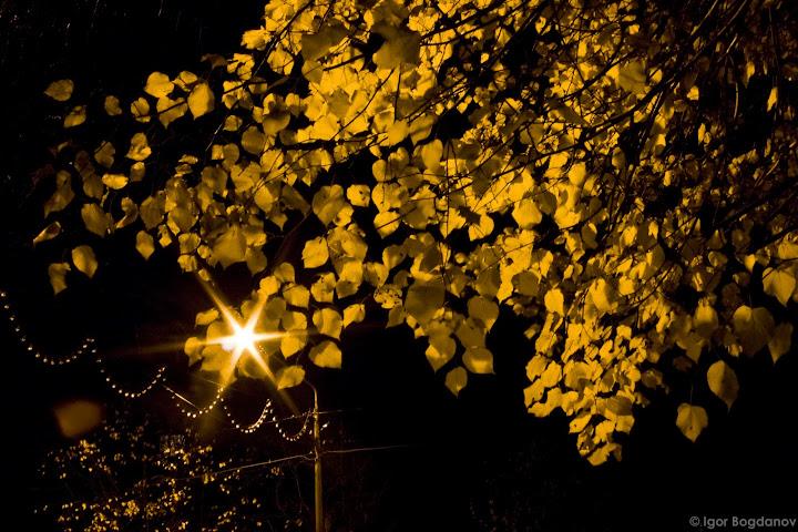 CRW 2669 Ночные прогулки, часть 1. Нарва.