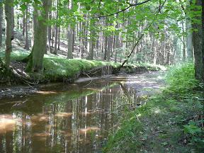 Maršovský potok