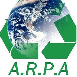 Who is Arpa Sales?
