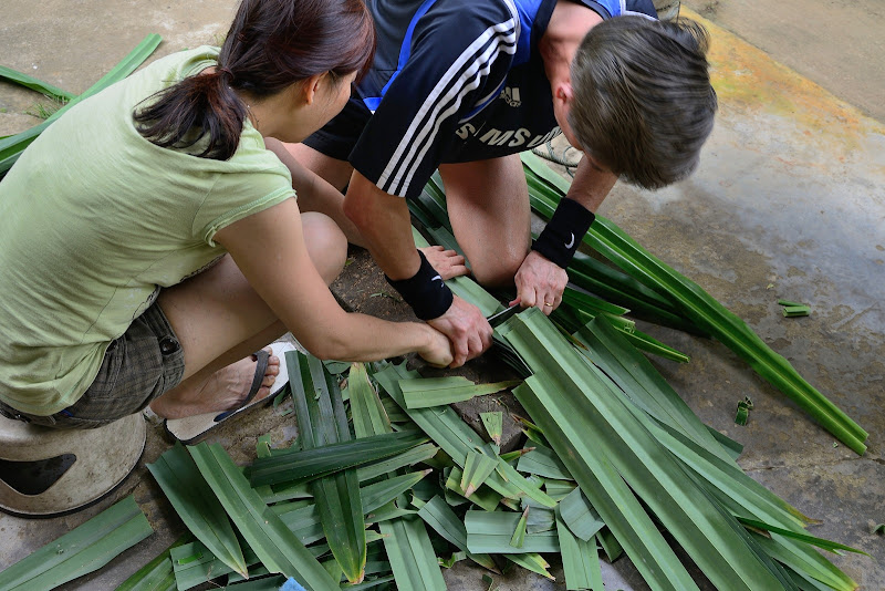 pandan leaves cut into length