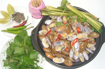 khach-san-danang-beach-chip-chip-hap-sa