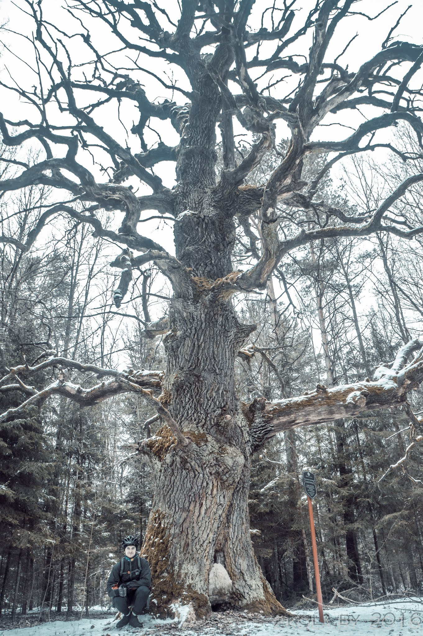 DSC08867 - Зимняя покатушка по достопримечательностям Ганцевичского и Клецкого районов.