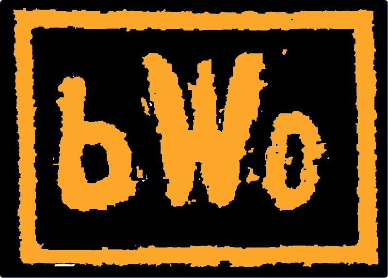 bWo: Bruins World Order