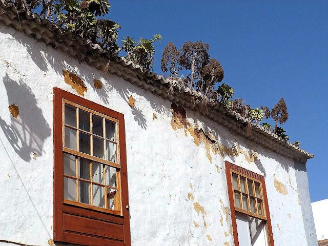 My blog de viajes san cristobal de la laguna - Temperatura en san cristobal de la laguna ...