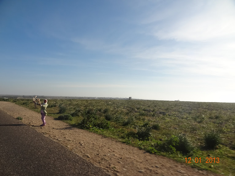 Marrocos e Mauritãnia a Queimar Pneu e Gasolina - Página 2 DSC05488